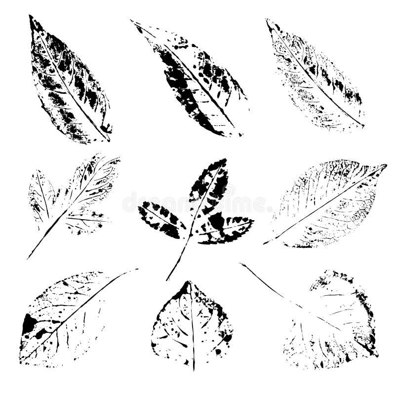 Reeks van het afdruk de verschillende blad vector illustratie