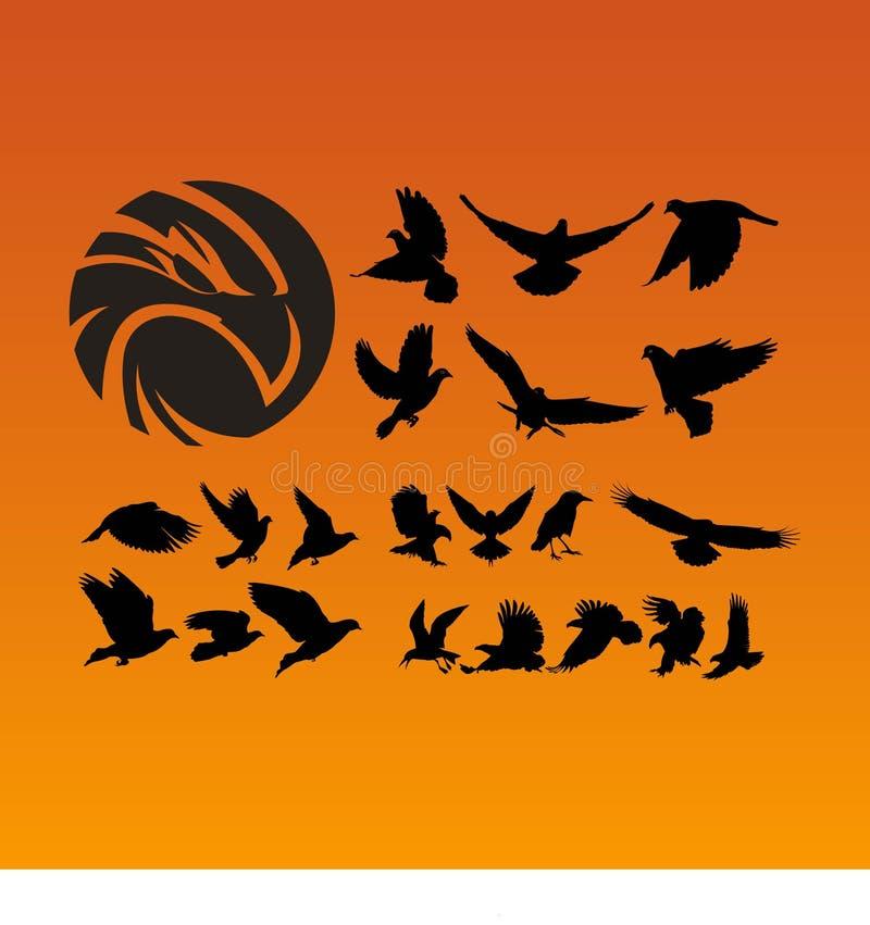 Reeks van het ontwerpvector van het adelaarsembleem op witte achtergrond wordt geïsoleerd die vector illustratie