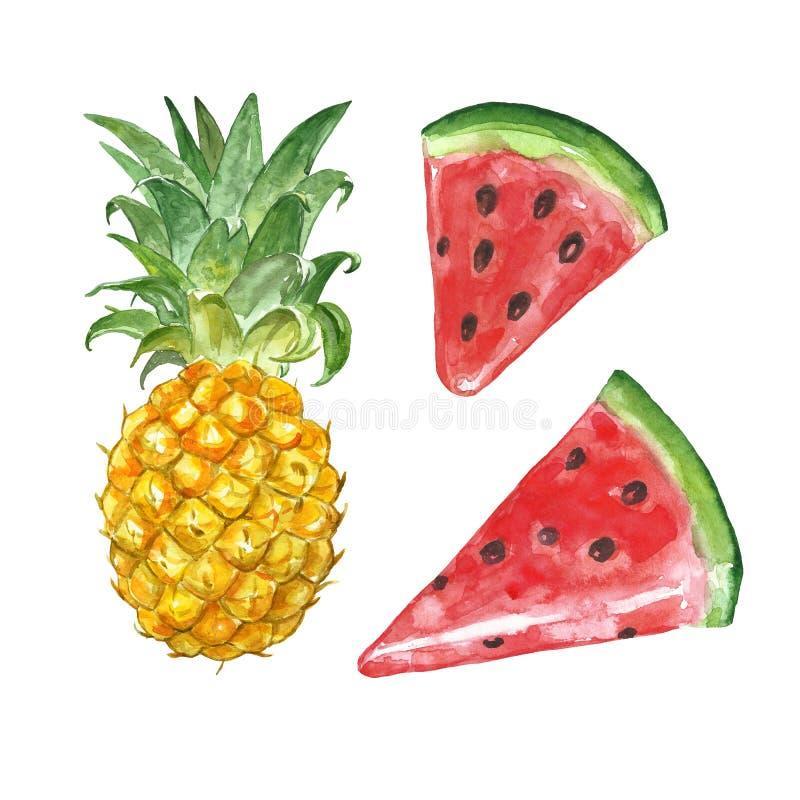 Reeks van het Watercolour de exotische fruit De hand schilderde rijpe watermeloen en paineapple, geïsoleerd op witte achtergrond  royalty-vrije stock fotografie