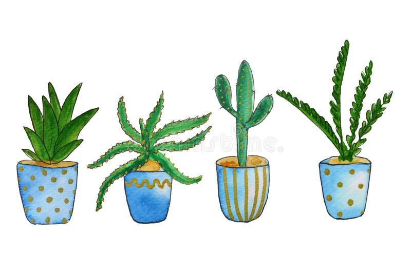 Reeks van van huis groene installaties en cactussen waterverfillustratie Verschillende types van diverse soorten huiscactus, palm vector illustratie