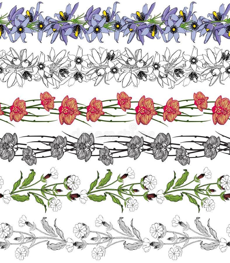 Reeks van 6 kleurrijke en zwart-witte naadloze bloemenborstels stock illustratie
