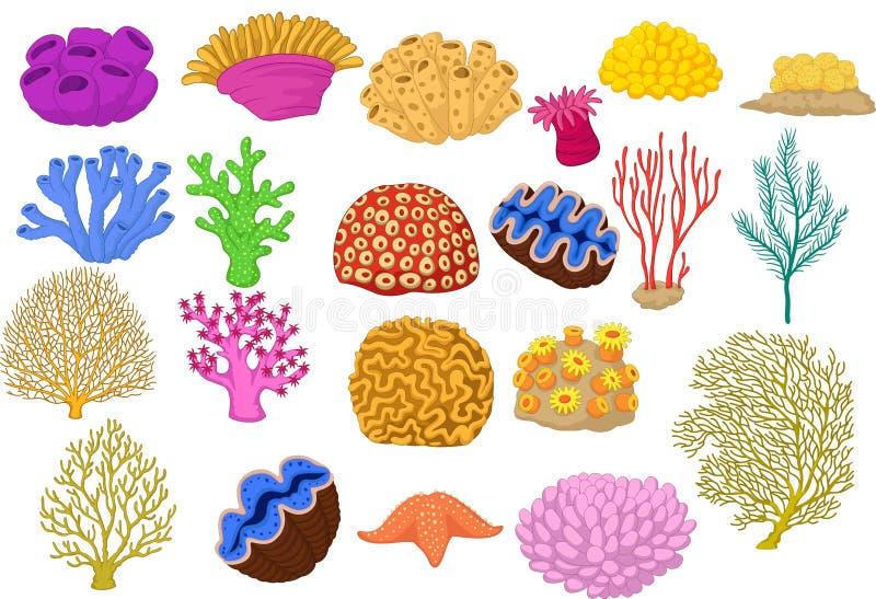 Reeks van kleurrijke koralen, klem en zeester royalty-vrije illustratie