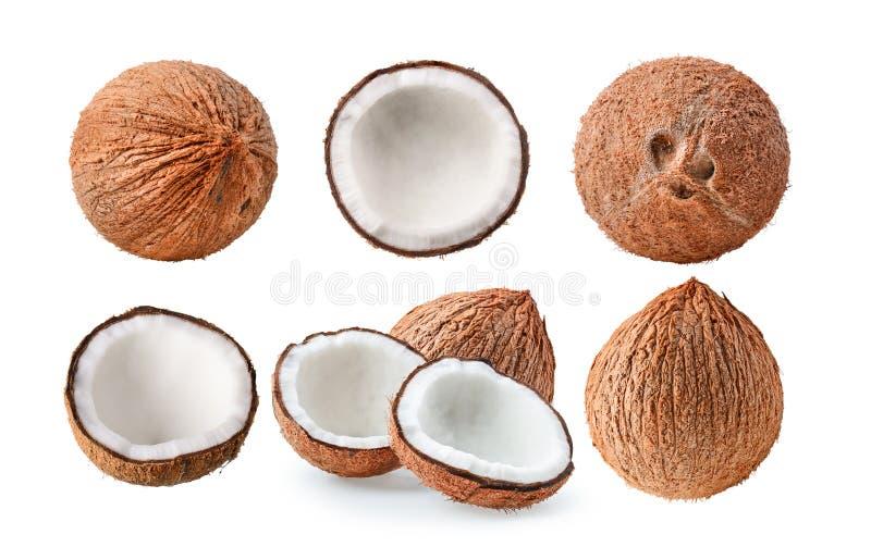 Reeks van kokosnoot op witte achtergrond royalty-vrije stock afbeeldingen