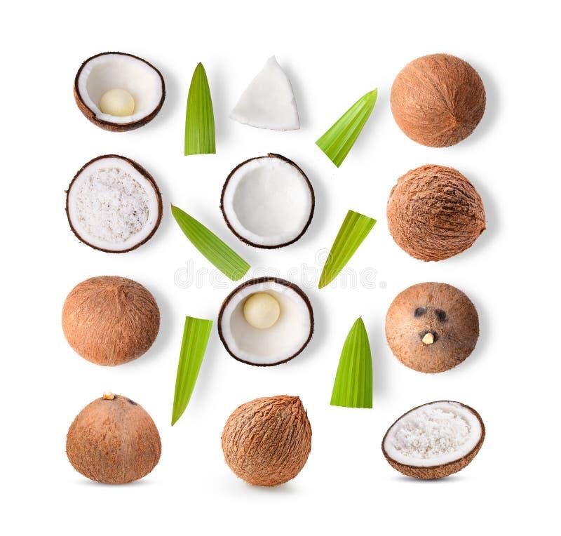 Reeks van kokosnoot op witte achtergrond stock afbeelding