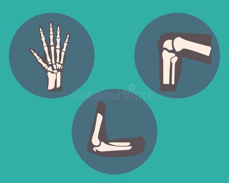 Reeks van menselijk knie, elleboog en enkelverbindingen en pols, embleem of teken van medische kenmerkende centrum of kliniek, vl royalty-vrije illustratie