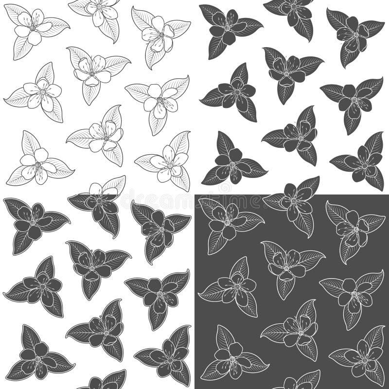 Reeks van naadloos patroon met zwart-witte de lentebloemen Vectorachtergrond met geïsoleerde voorwerpen vector illustratie