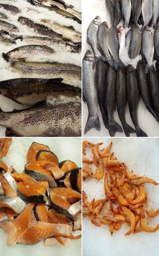 Reeks van overzees voedsel stock foto's
