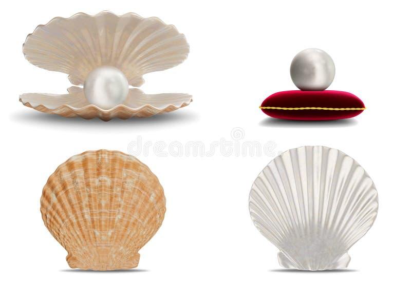 Reeks van overzeese shell met binnen parel Inzamelingsgemmen, de juwelen van vrouwen, paarlemoerparels Parel op rood fluweelhoofd stock illustratie