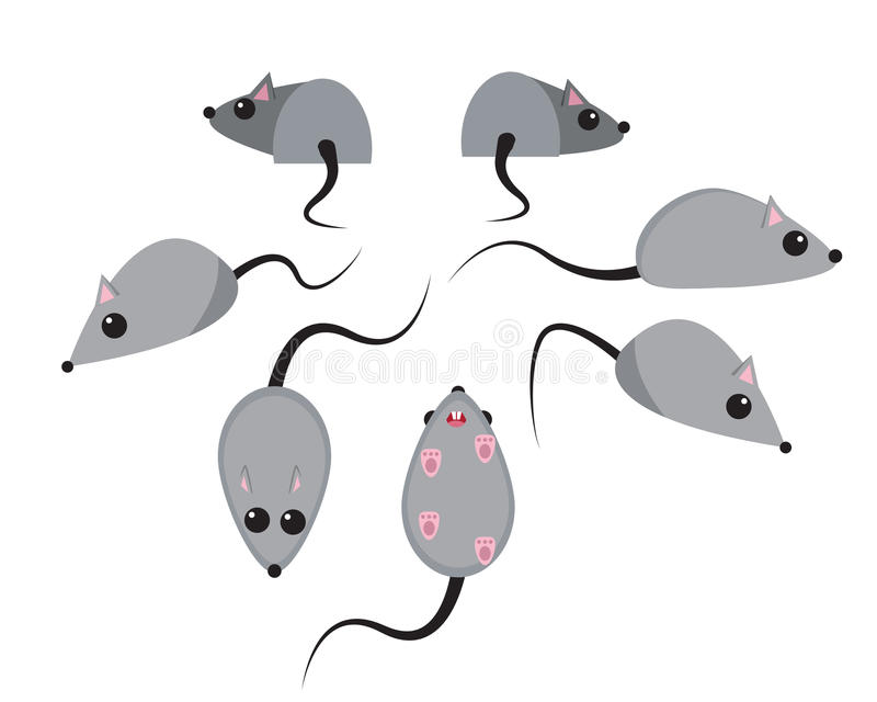 Reeks van rat in vlakke stijl stock illustratie