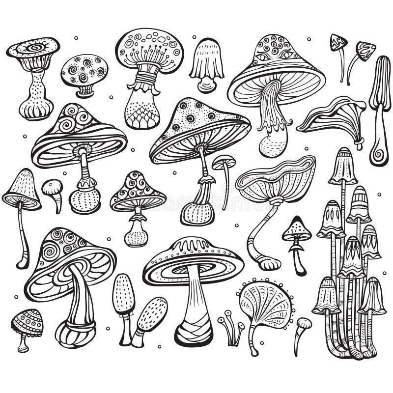 Reeks van Schets van paddestoelen royalty-vrije illustratie
