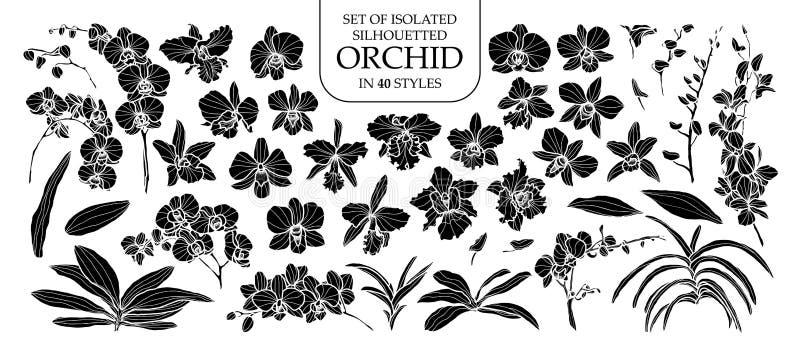 Reeks van silhouetorchidee in 40 stijlen Leuke hand getrokken vectorillustratie in wit overzicht en zwart vliegtuig vector illustratie