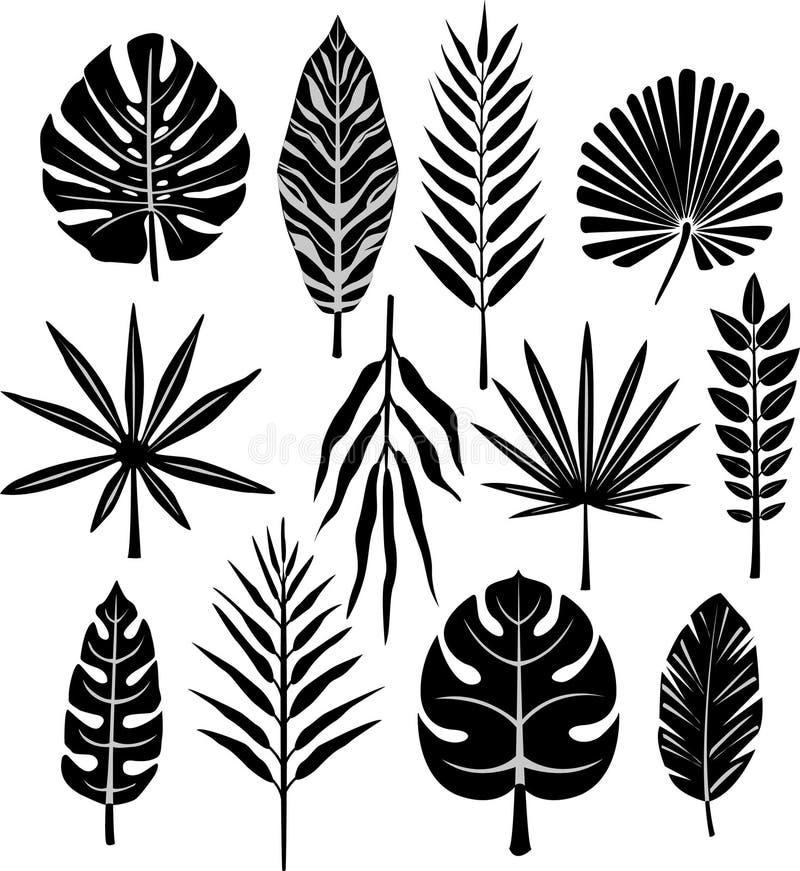 Reeks van tropisch blad vector illustratie