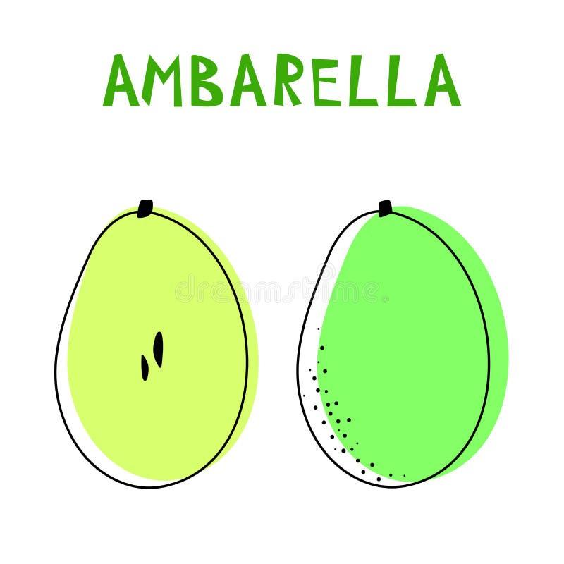 Reeks van twee geïsoleerde ambarellas Vectortekening van zeldzaam topucal exotisch fruit - ambarella Spondiasdulcis, mombin, pomm stock illustratie