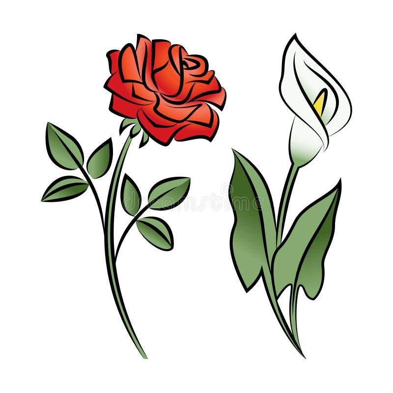 Reeks van twee geschetste bloemen Calla en nam toe stock illustratie
