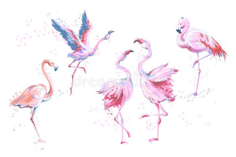 Reeks van 5 vector schetsmatige die flamingo's van de waterverf imitatiestijl op wit wordt geïsoleerd Vectorillustratie van roze  royalty-vrije illustratie