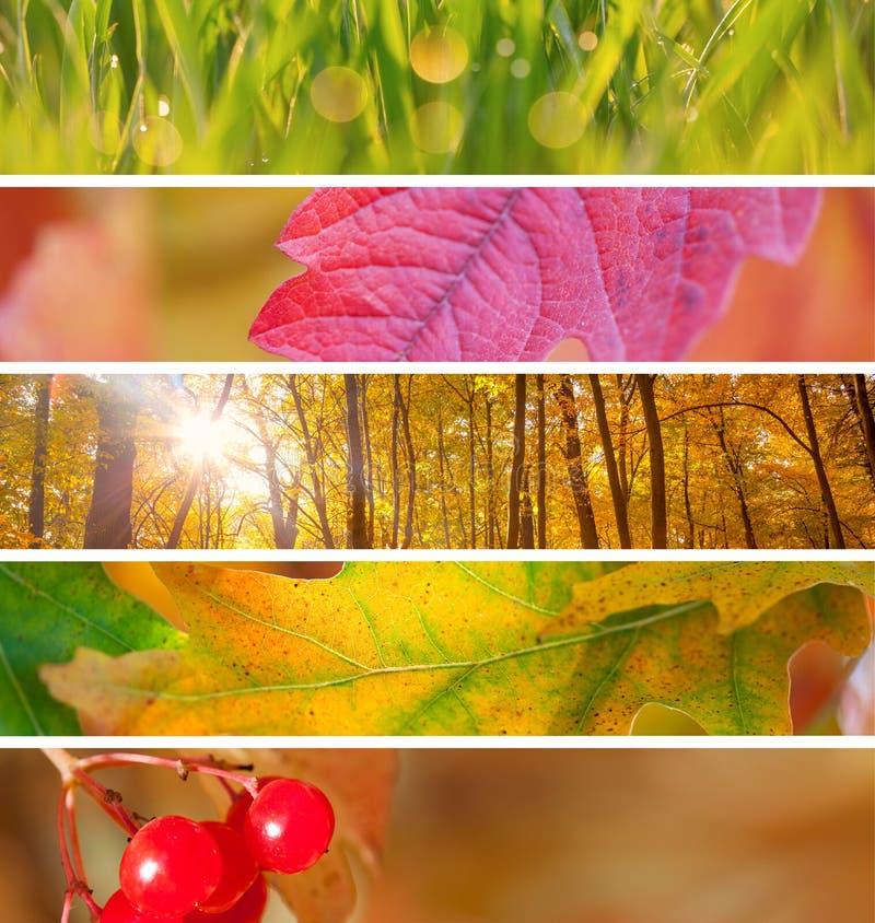 Reeks van Verschillend Autumn Banners voor Internet, de mooie Herfst stock afbeeldingen