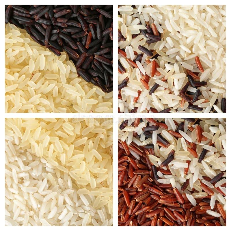 Reeks van verschillende ongekookte rijst op witte achtergrond royalty-vrije stock fotografie