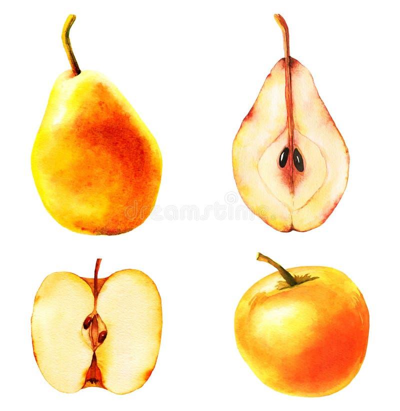 Reeks van vier appelen en perenillustraties royalty-vrije illustratie