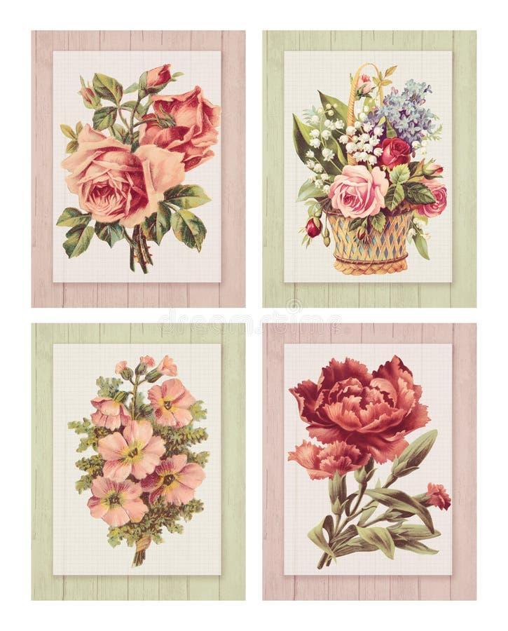 Reeks van vier Voor het drukken geschikte uitstekende sjofele elegante stijlbloem op houten geweven kader als achtergrond royalty-vrije illustratie
