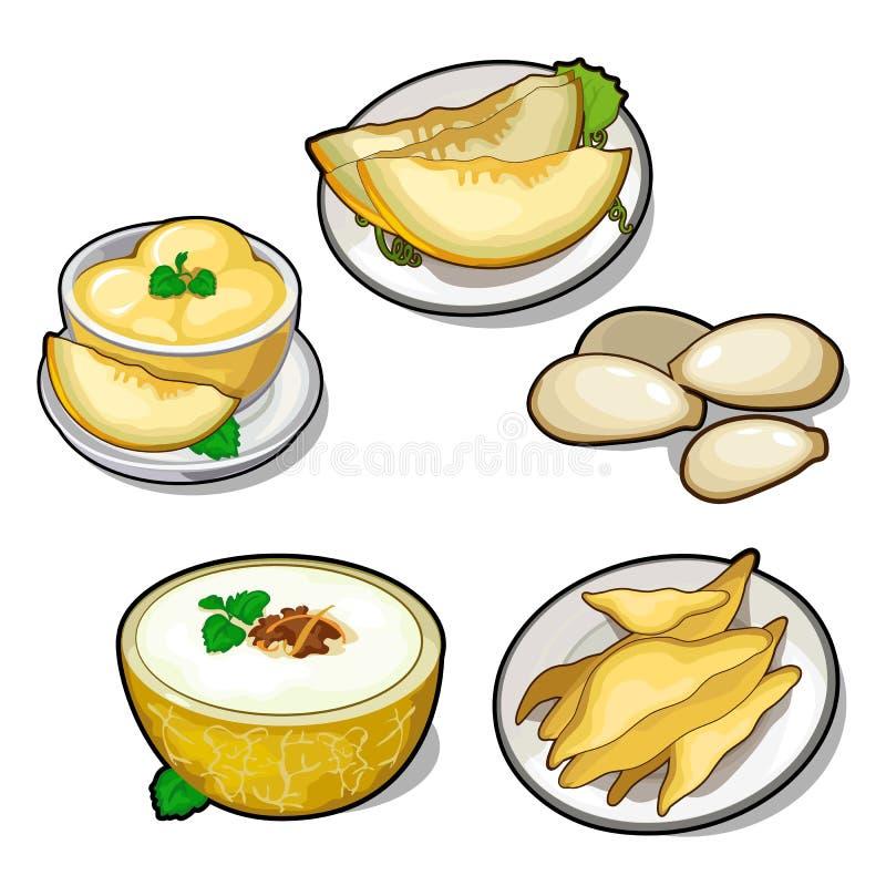 Reeks van vijf verschillende schotels van meloen stock illustratie