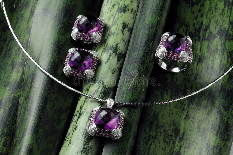 Reeks van Violetkleurige Juwelen royalty-vrije stock afbeeldingen