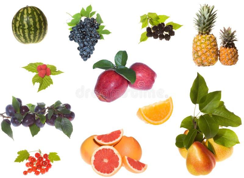 Reeks van vruchten en besseninzameling stock fotografie