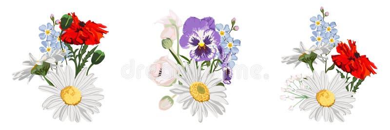 Reeks van wilde bloemenboeketten, Kamille Daisy, knoppen, rode papaver, altviool en vergeet-mij-nietje stock illustratie