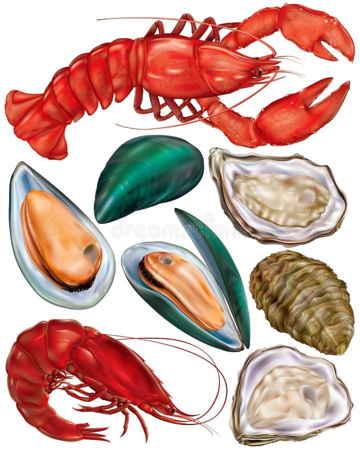 Reeks van zeevruchten vector illustratie