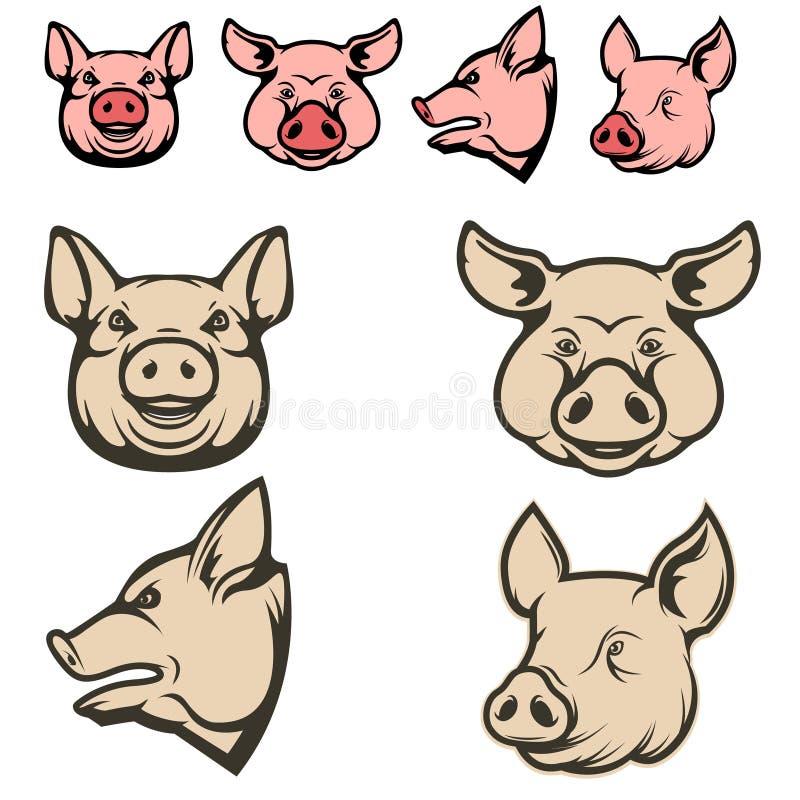 Reeks varkenshoofden royalty-vrije illustratie