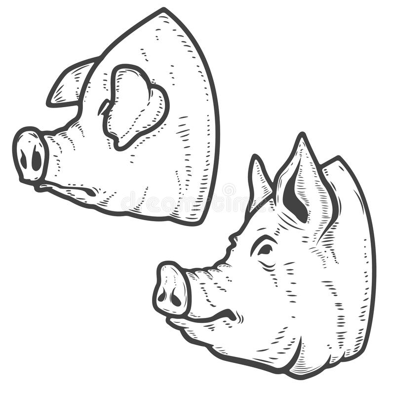 Reeks varkenshoofden op witte achtergrond wordt geïsoleerd die Het vlees van het varkensvlees Ontwerp stock illustratie