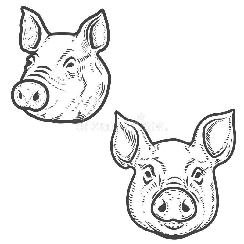Reeks varkenshoofden op witte achtergrond wordt geïsoleerd die Het vlees van het varkensvlees Ontwerp royalty-vrije illustratie