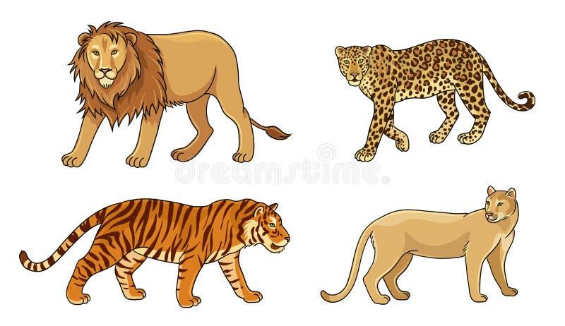 Reeks vector grote katten stock illustratie