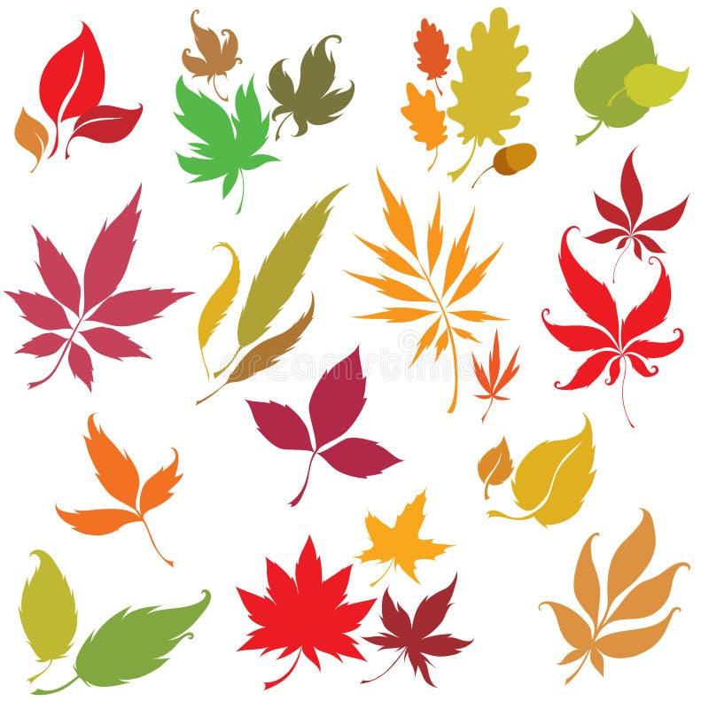 Reeks vector het ontwerpelementen van de herfstbladeren vector illustratie