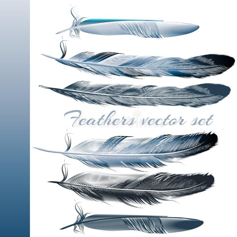 Reeks vector realistische kleurrijke veren royalty-vrije illustratie