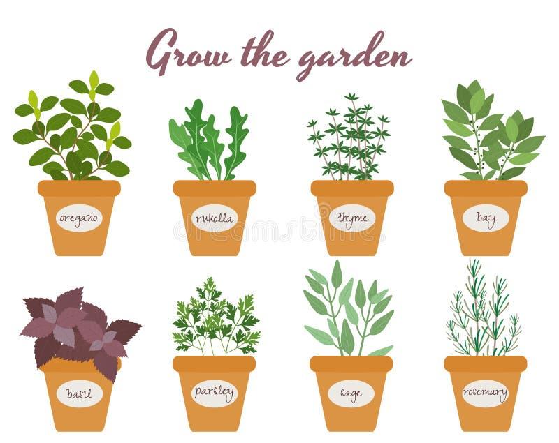 Reeks vectorkruiden in potten met etiketten vector illustratie