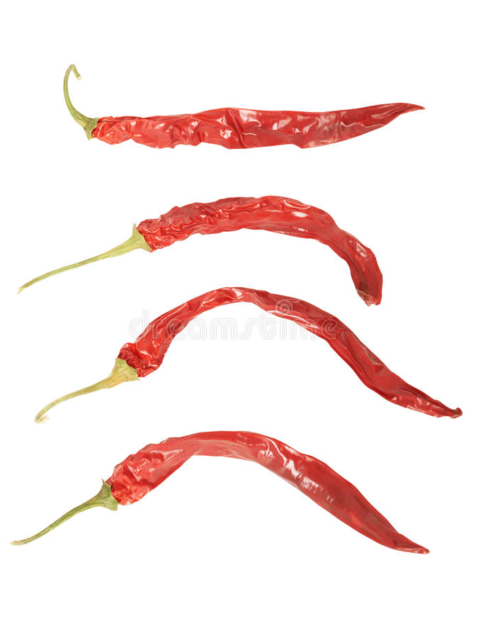 Reeks Vernietigde Spaanse pepers. royalty-vrije stock afbeeldingen