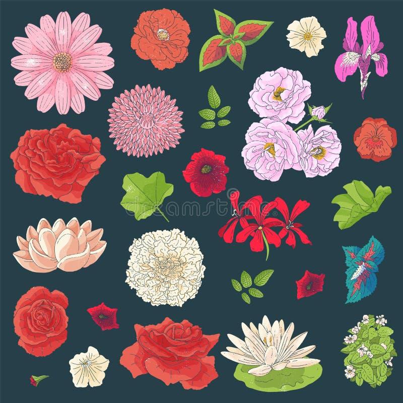 Reeks verschillende bloemen in krabbelstijl Hand getrokken elementen voor huwelijks bloemenontwerp, vectorillustratie De Bloesem  stock illustratie