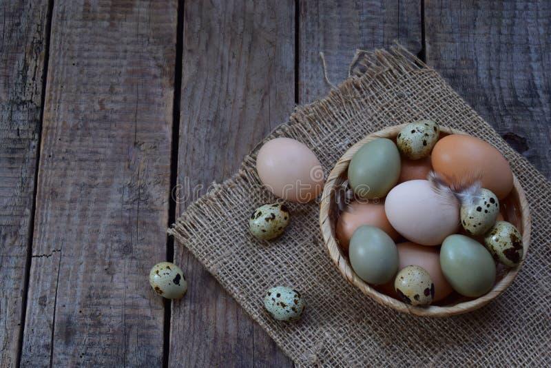 Reeks verschillende eieren van typesvogels van kip, fazant en kwartels met veren op een houten achtergrond royalty-vrije stock fotografie
