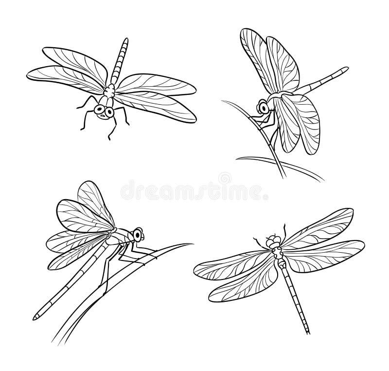 Reeks verschillende libellen in overzichten - vectorillustratie stock foto