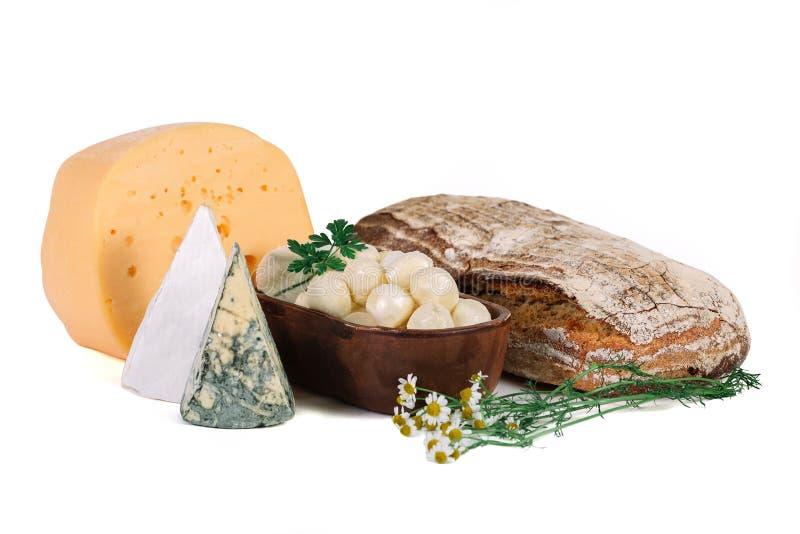Reeks verschillende soorten kaas met eigengemaakt brood royalty-vrije stock foto