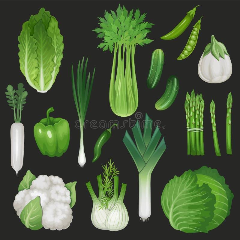 Reeks verse groene groenten vector illustratie