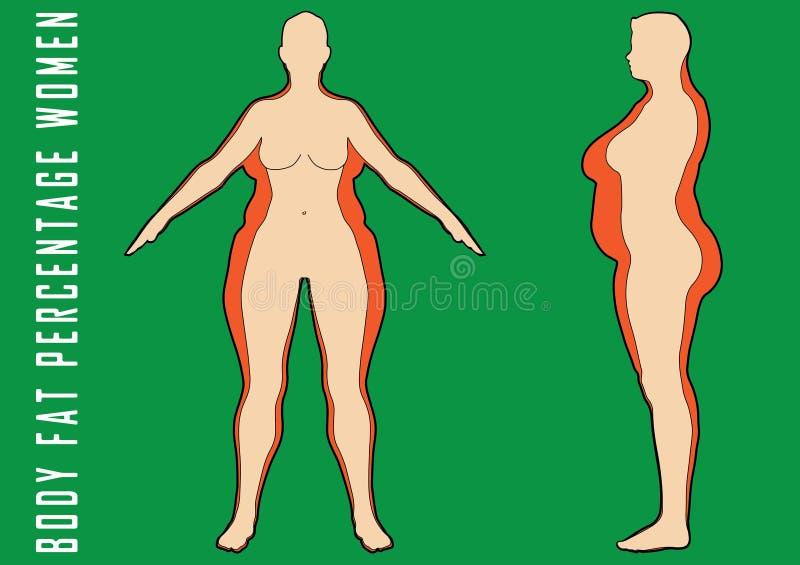 Reeks vlakke vrouwen before and after dieet vectorillustratie Vet en slank meisje royalty-vrije illustratie