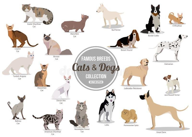 Reeks vlakke zitting of het lopen leuke beeldverhaalhonden en honden Populaire rassen Vlakke stijlontwerp geïsoleerde pictogramme royalty-vrije illustratie