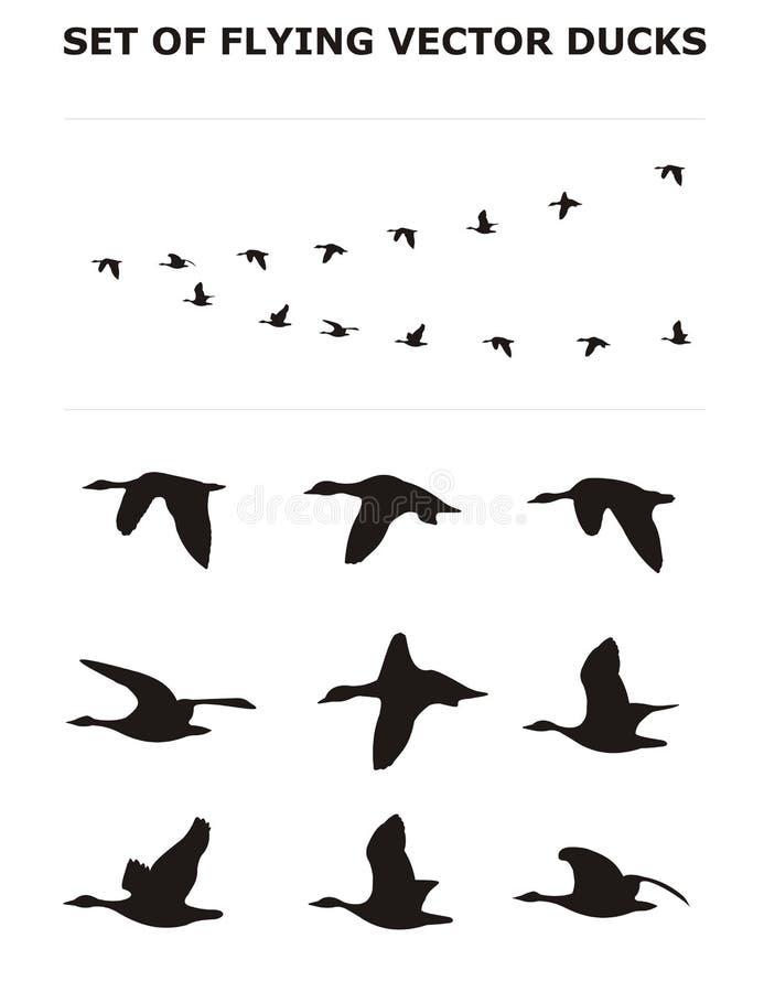 Reeks vliegende eenden vector illustratie