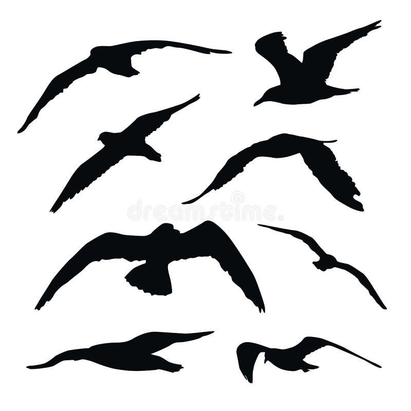 Reeks vliegende zeemeeuwsilhouetten die op witte achtergrond wordt geïsoleerd vector illustratie