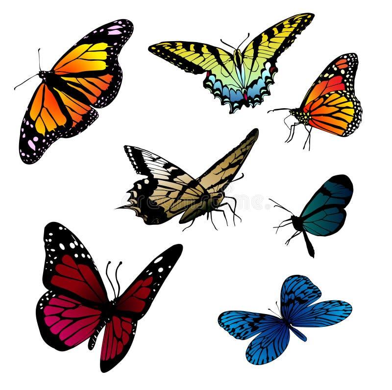 Reeks vlinders stock illustratie