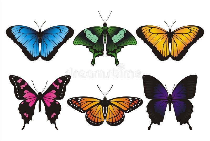 Reeks vlinders royalty-vrije stock foto's