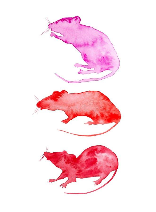 Reeks voor kalender van drie abstracte ratten r Reeks voor zomer: Juni, Juli, August Watercolor-illustratie royalty-vrije stock foto's