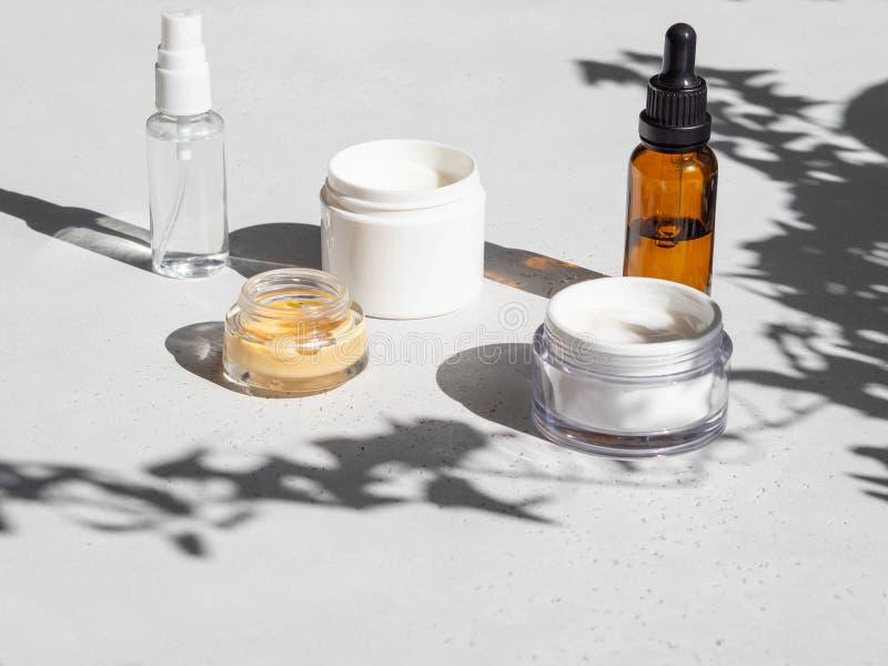 Reeks voor vrouwelijke huidverzorgers Makeupproducten en huidreinigers op grijze achtergrond met schaduwen van planten Kopieerrui stock fotografie