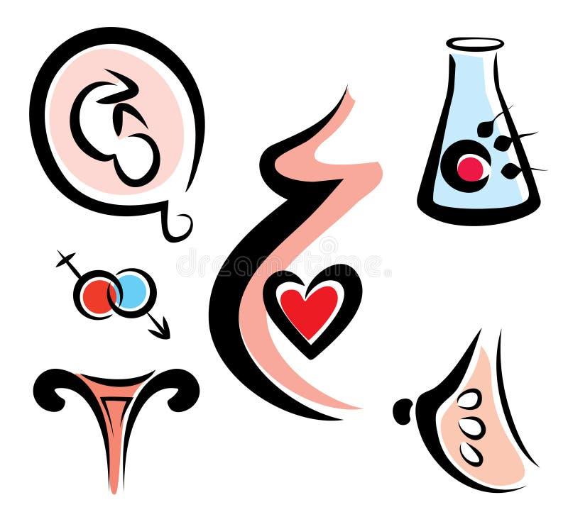 Reeks vrouwelijke en prenatale verwante medische pictogrammen vector illustratie